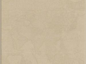 cardboardBrown_background-1053x875-1176x875