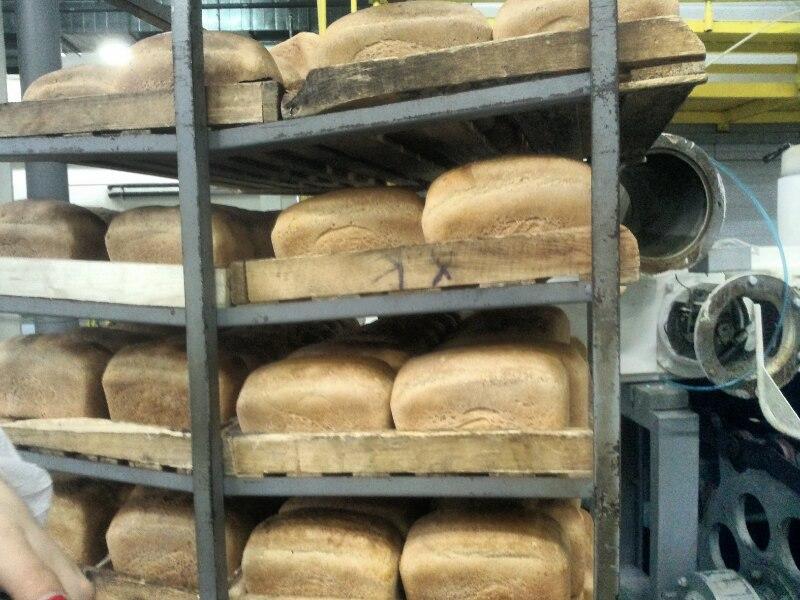 Строительство пекарни своими руками 35