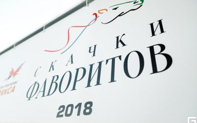 Скачки фаворитов — королевский спорт в Тюмени при поддержки АБСОЛЮТ